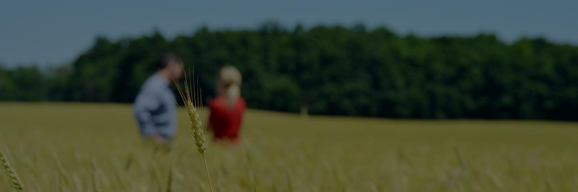 Farmer and Advisor in field